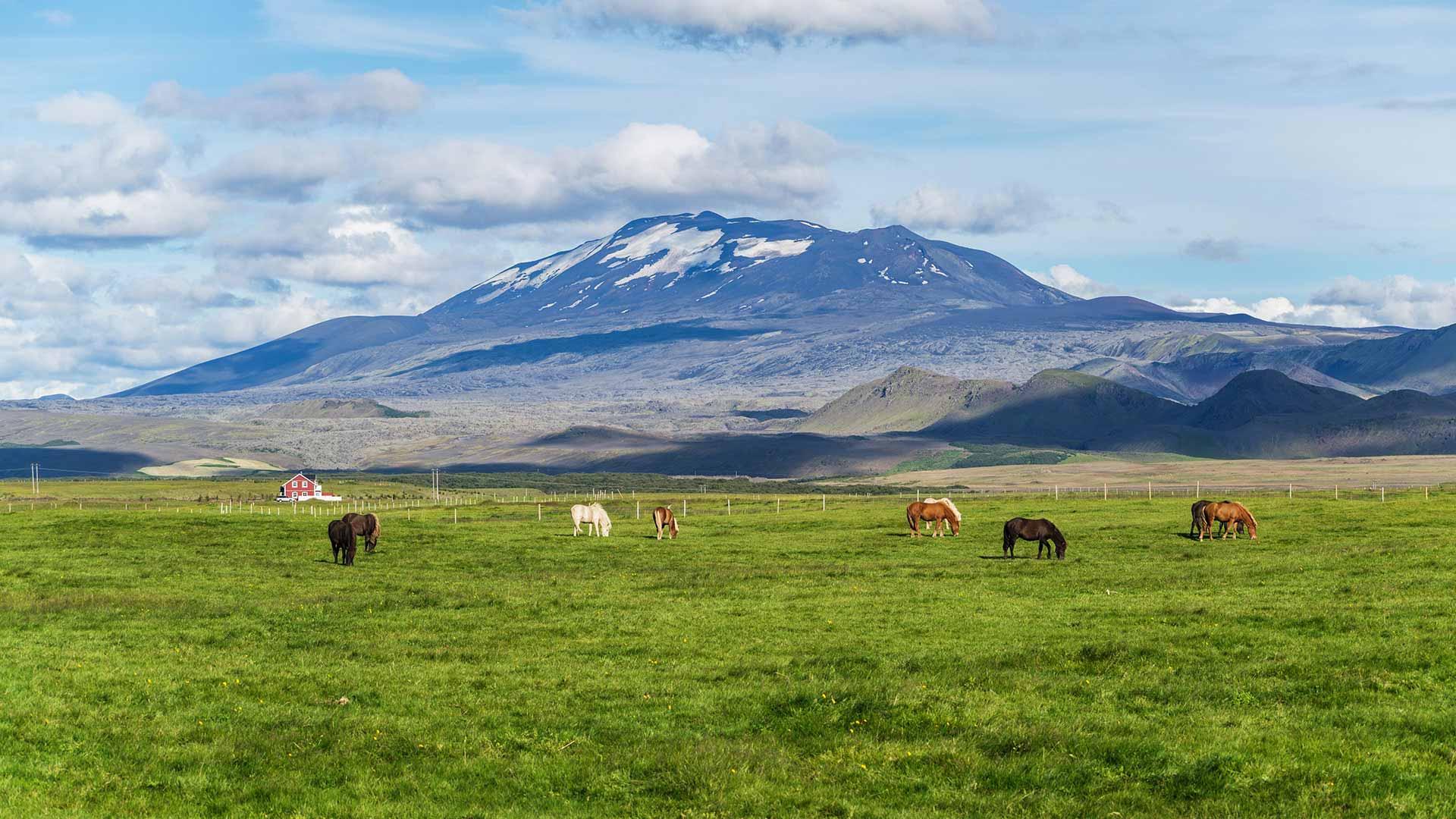 Adventures And Activities In Reykjavik 7 Days 6 Nights