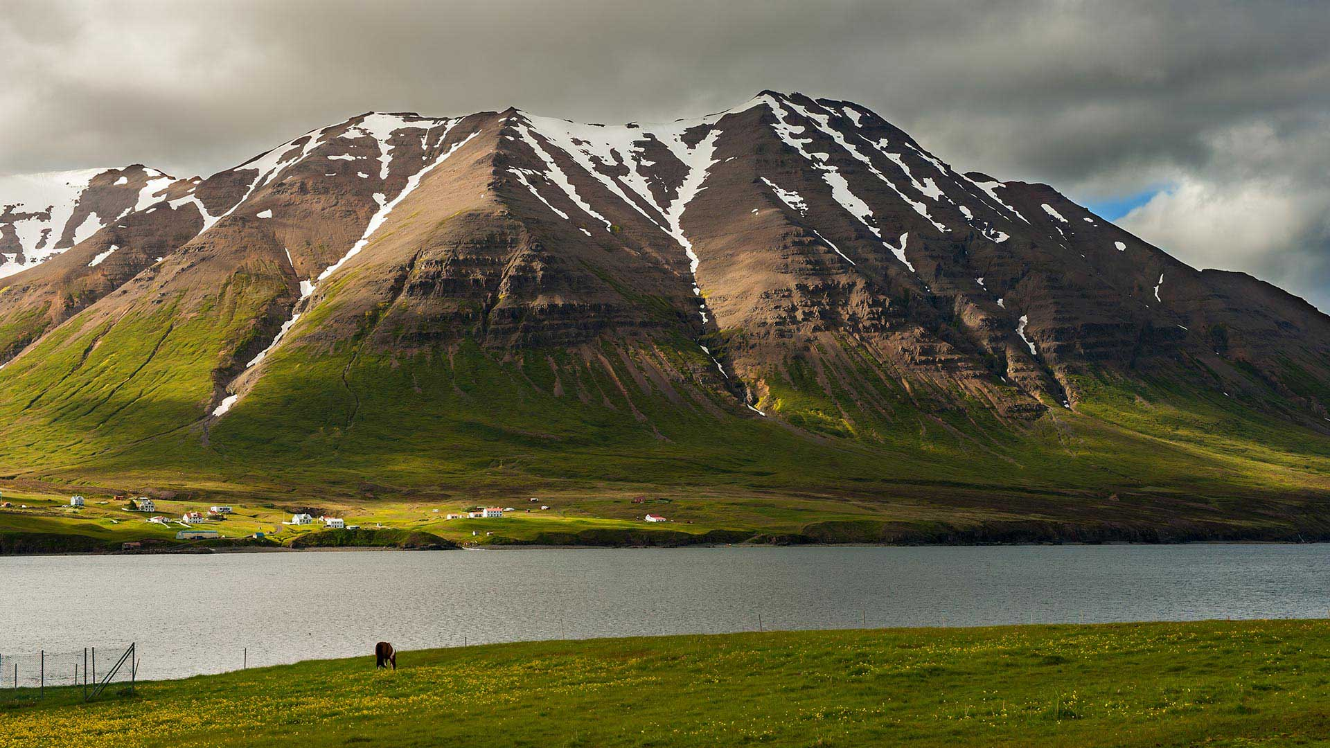 iceland self guided tours reviews